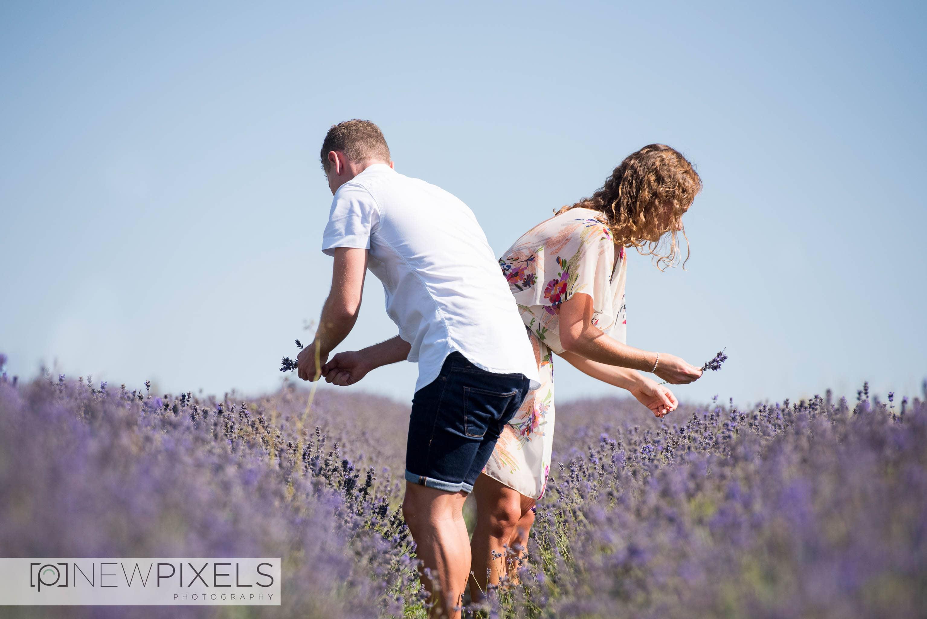 Lavender_Field_Engagement_Shoot-16