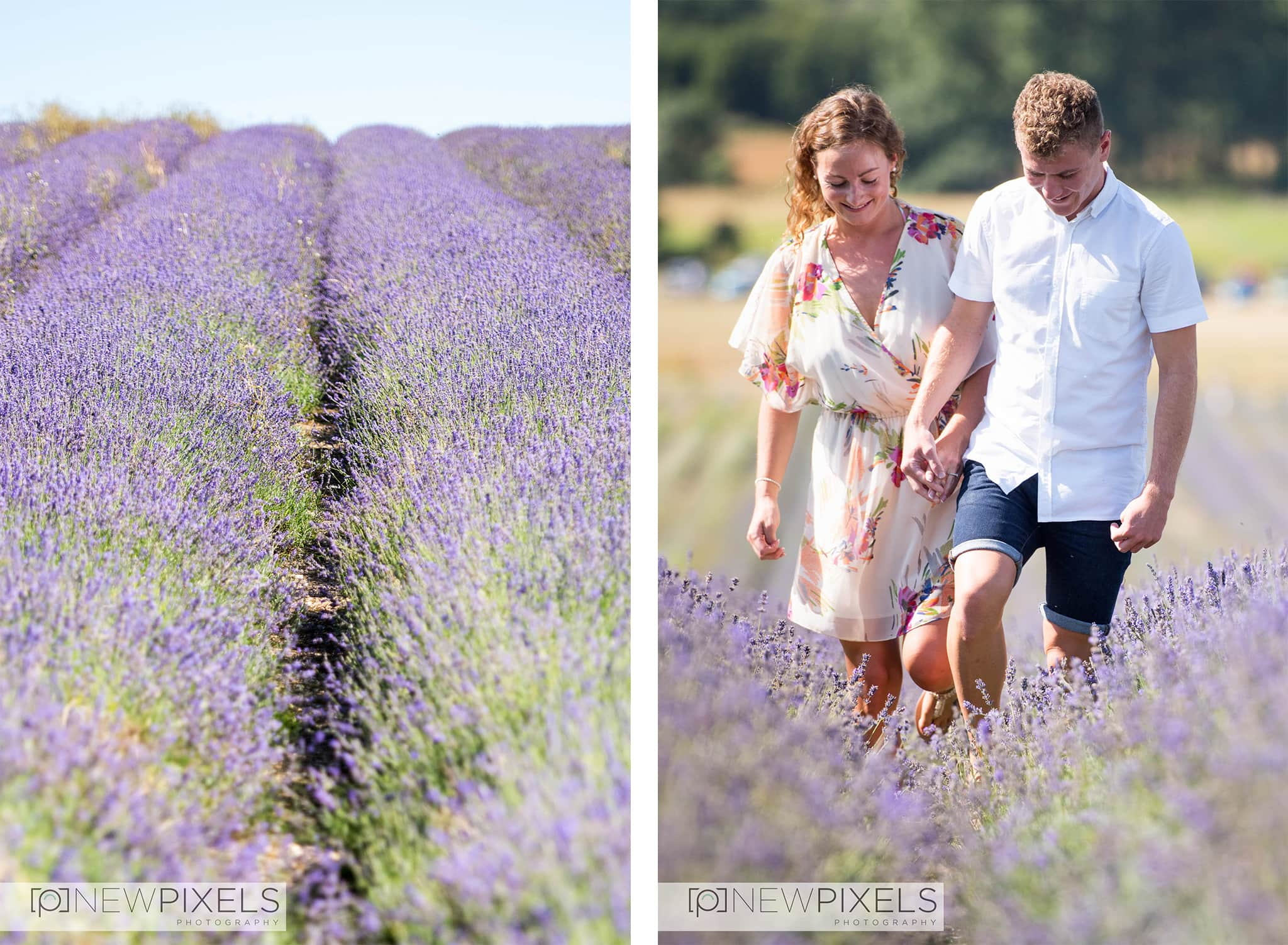 Lavender_Field_Photoshoot1