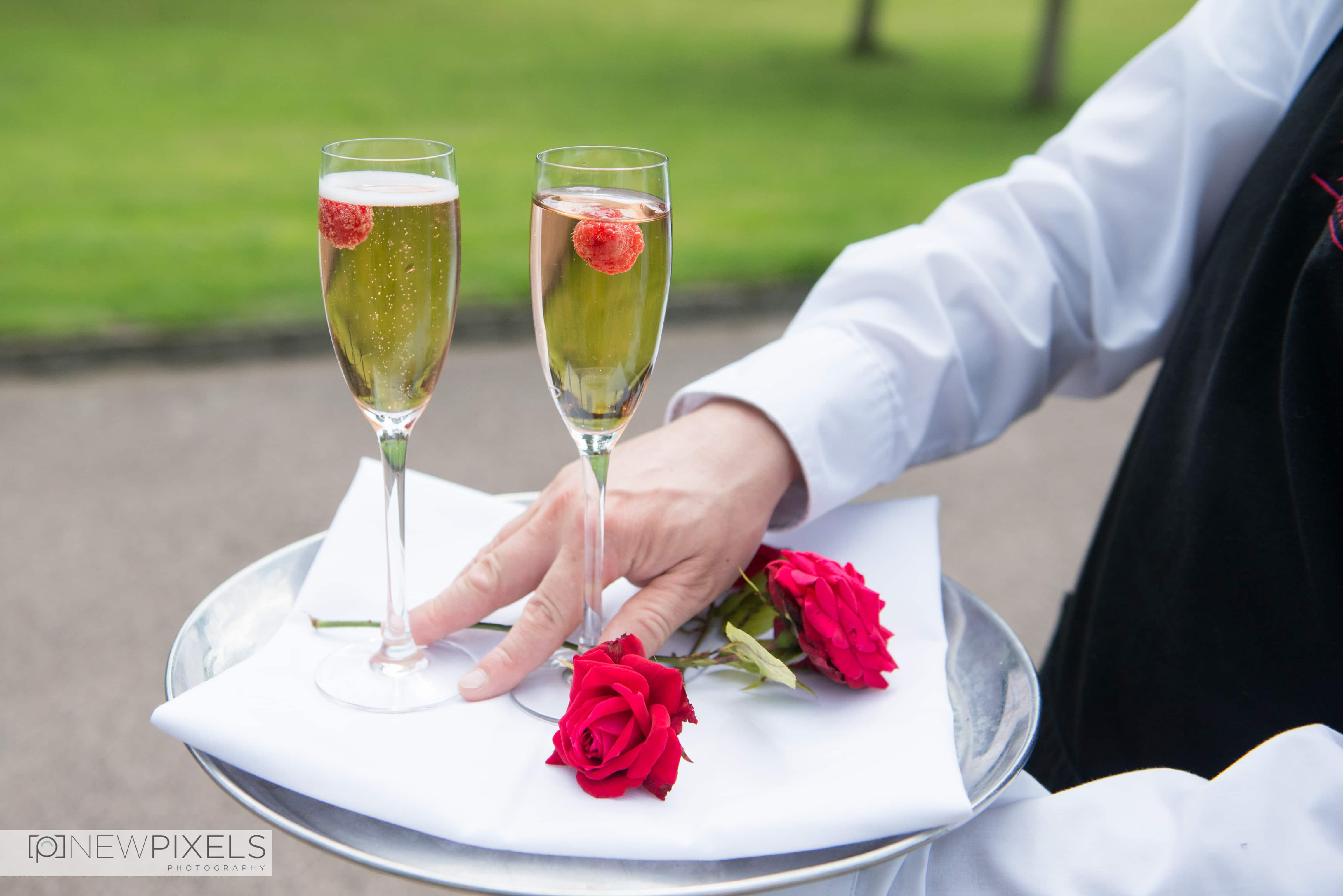 Fanhams Hall Wedding Photography-20