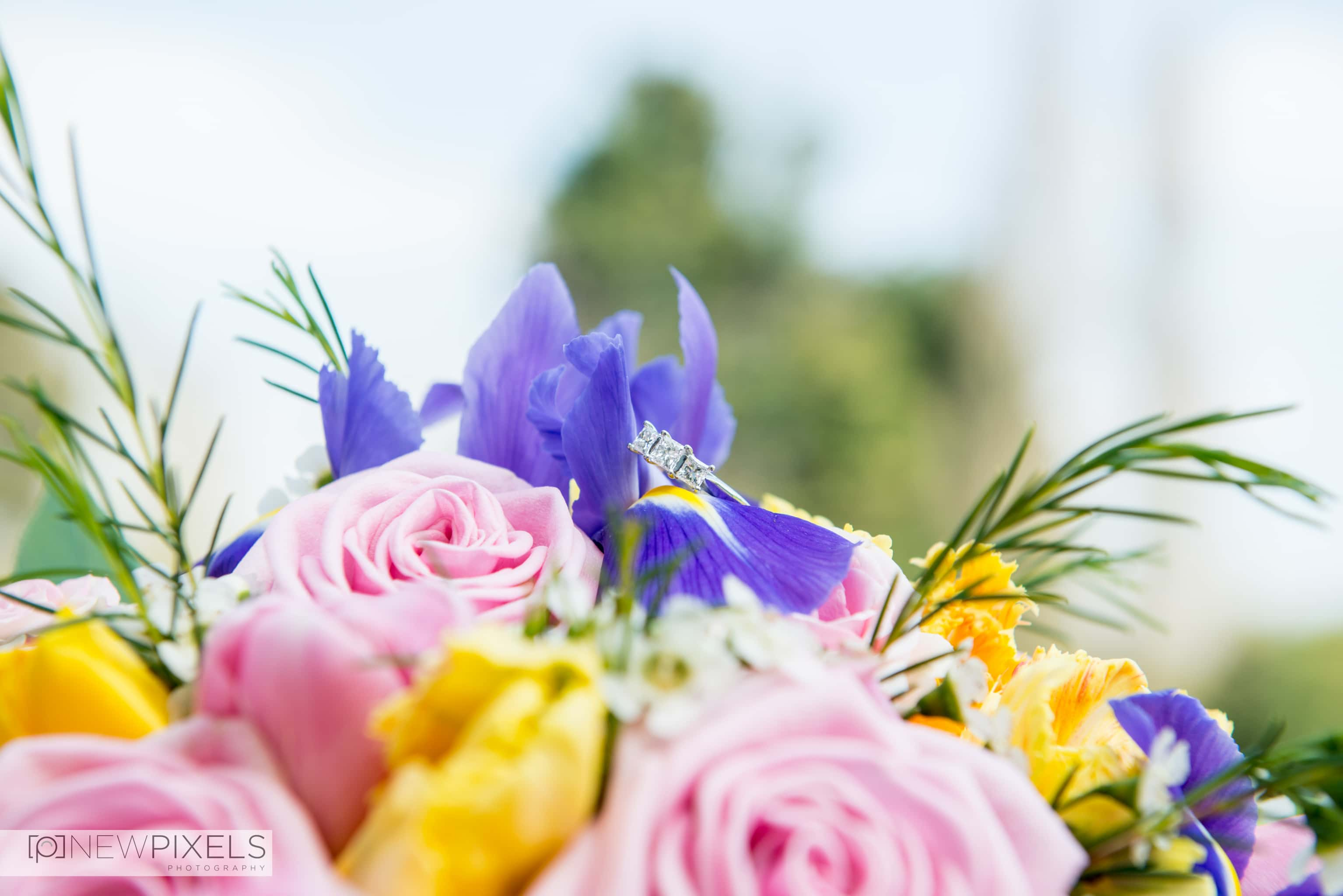 Ye Olde Plough House Wedding Photographs-1