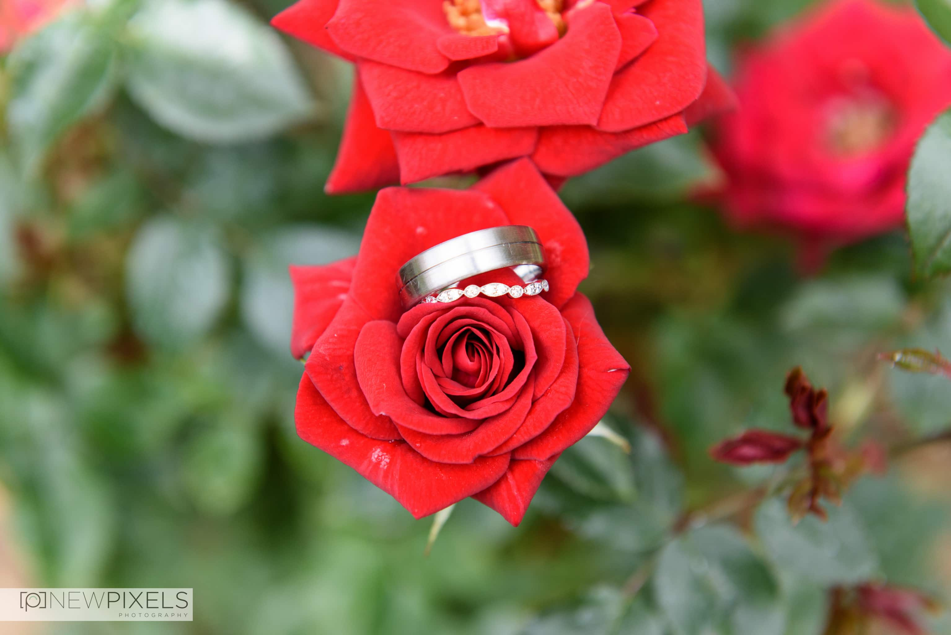 The Lion Inn Essex Wedding Photographs-2